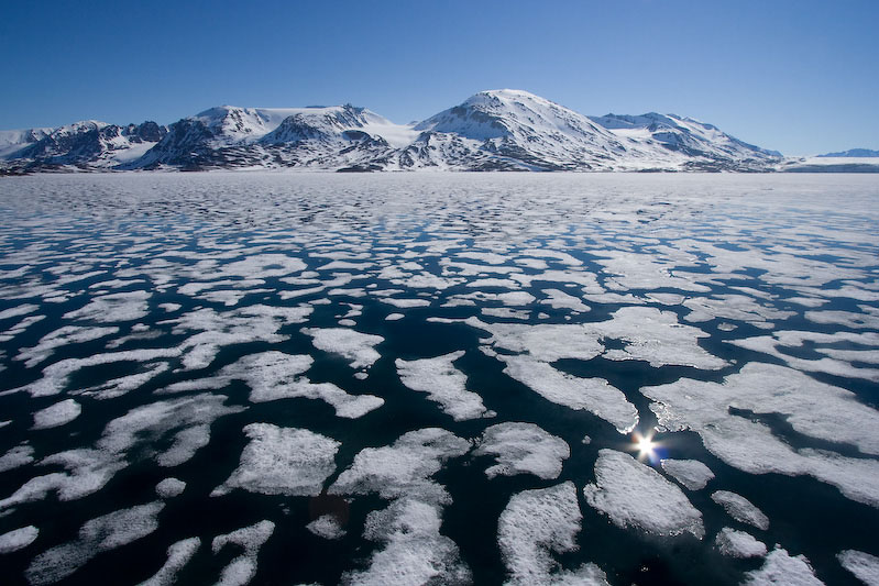 Natuurfotografie op Spitsbergen