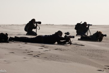 Natuurfotografen op het strand van Helgoland; Wildlife photographers at the beach of Helgoland.