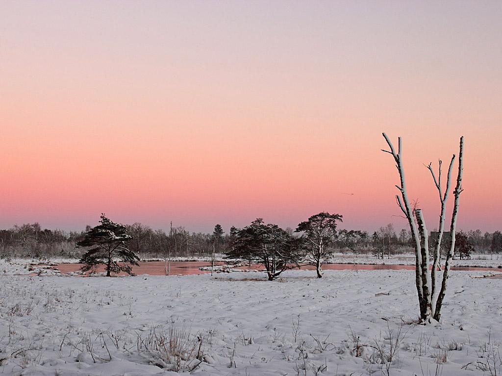 Gebieden fotograferen Natuurfotografie.nl:Kortenhoeff