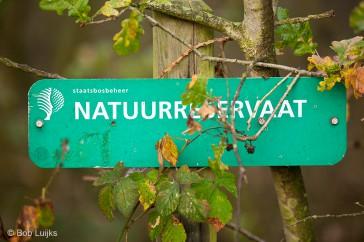 Natuurreservaat
