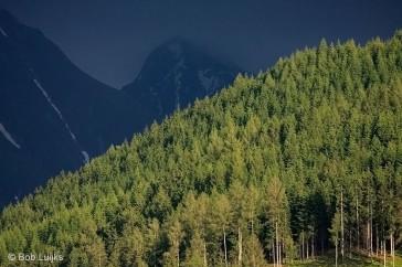 Bob_Luijks-bergen
