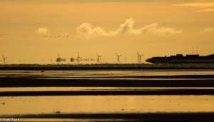 Door de luchtspiegeling lijken de windmolens te zweven boven de horizon. - Fotograaf: Ron Poot