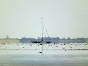 De trillende lucht boven een zandplaat maakt van de zeilboot een macaber beeld.  - Fotograaf: Ron Poot