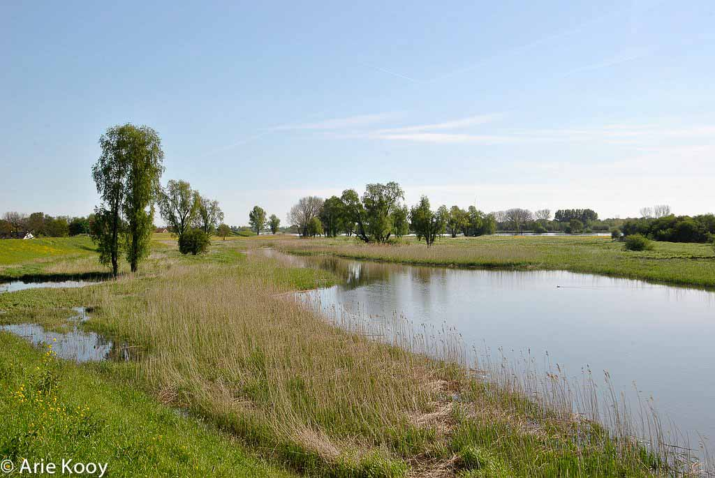 Gebieden fotograferen Natuurfotografie.nl:Lekuiterwaarden ten oosten van Schoonhoven