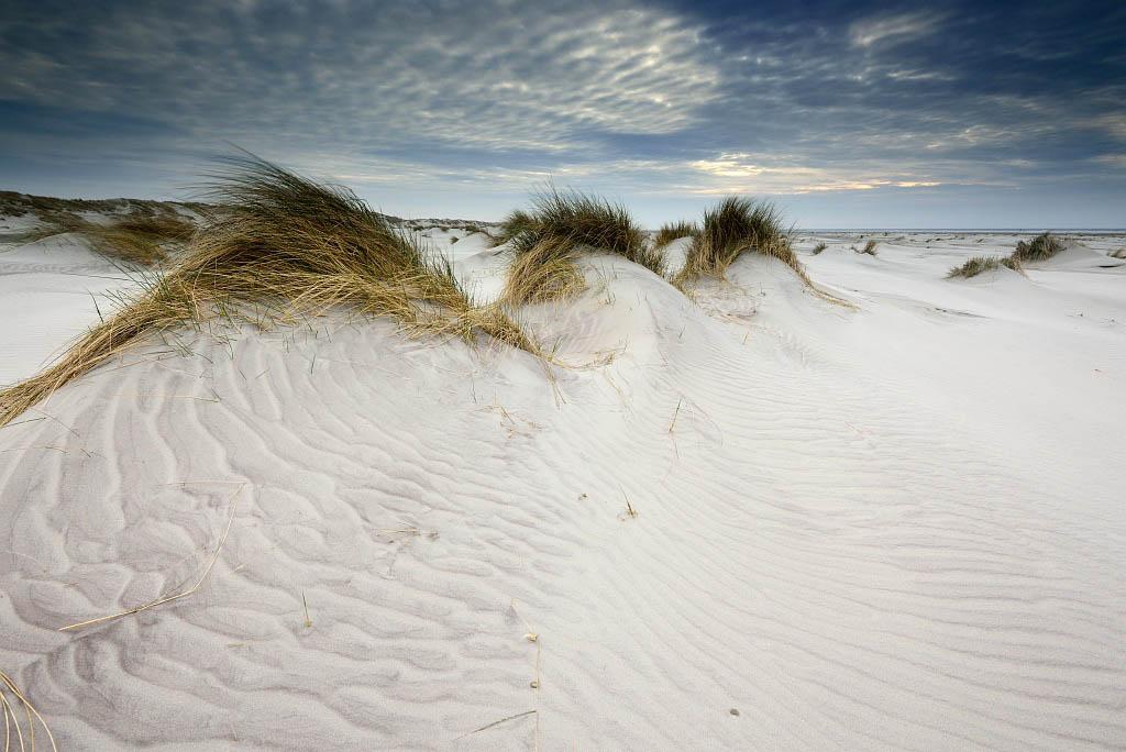 Gebieden fotograferen Natuurfotografie.nl:Ameland