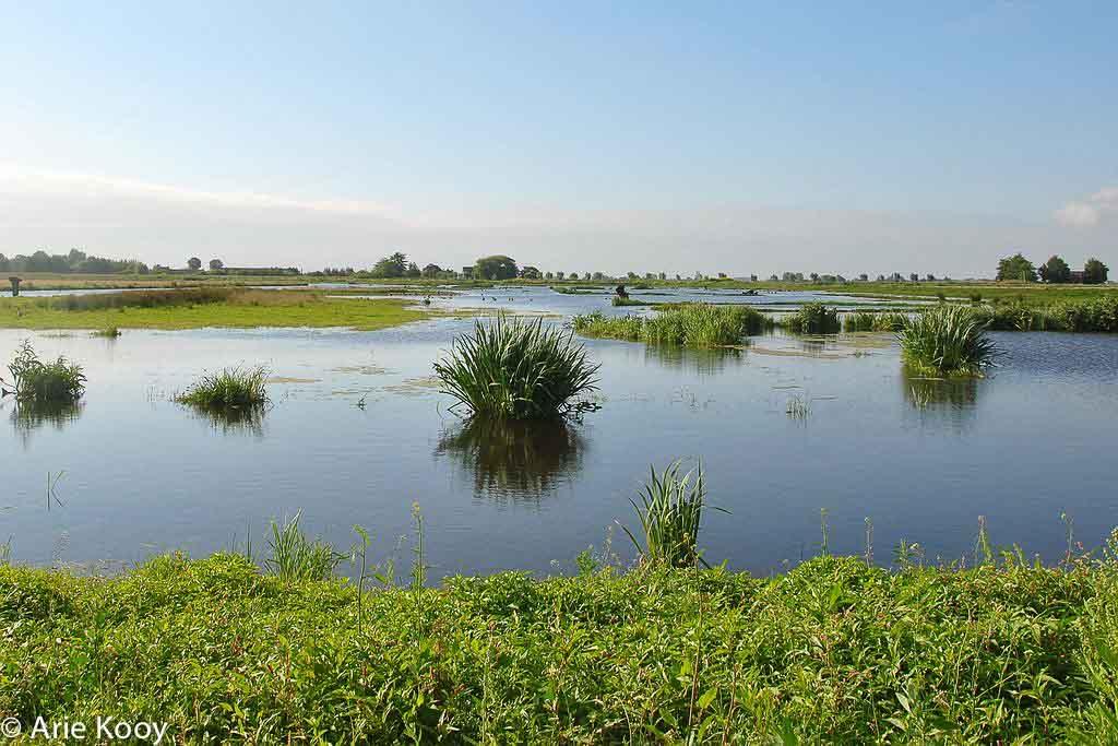 Gebieden fotograferen Natuurfotografie.nl:Het Doove Gat