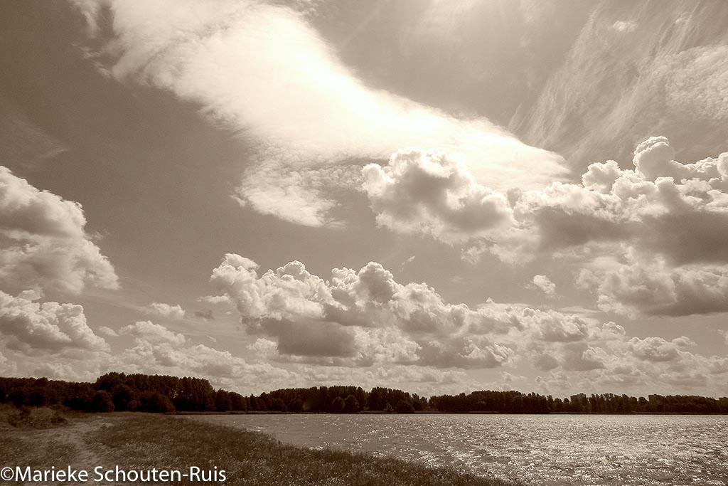 Gebieden fotograferen Natuurfotografie.nl:Zevenhuizerplas