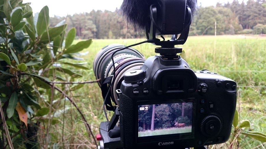 8 essentiële benodigdheden voor het filmen van natuur met een DSLR