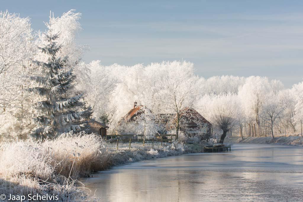 Fotografeer deze week eens…een kerstkaart