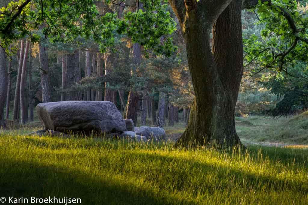 Gebieden fotograferen Natuurfotografie.nl:Geopark de Hondsrug