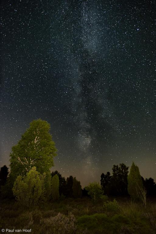 Melkweg boven heide, Nikon 20mm f/1.8, full-frame