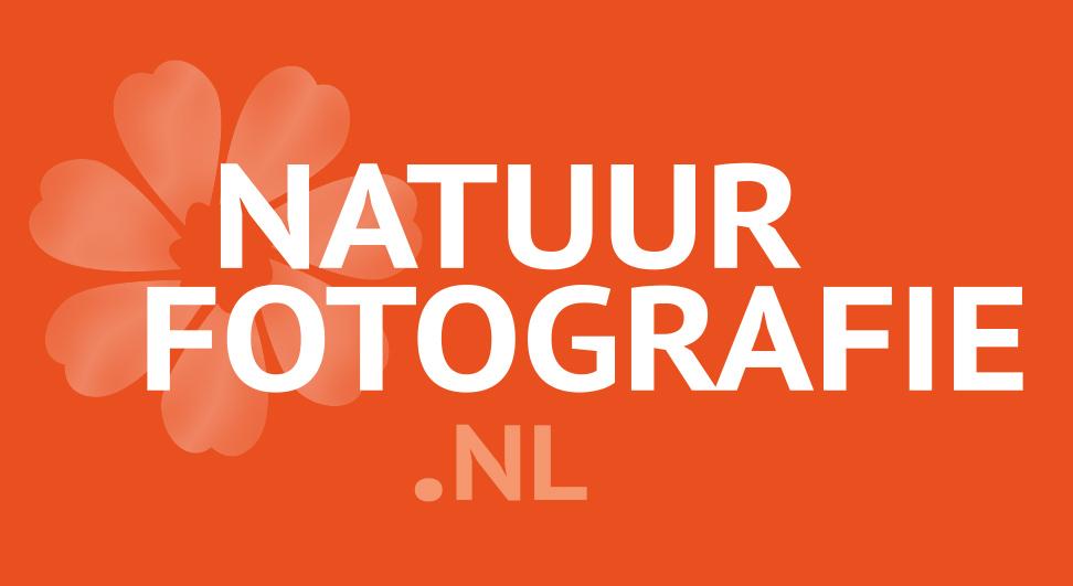 Resultaten lezersenquête Natuurfotografie.nl
