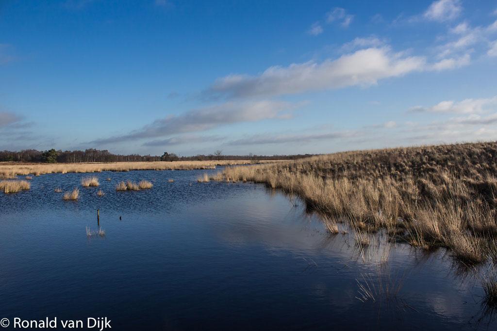 Gebieden fotograferen Natuurfotografie.nl:Engbertsdijksvenen
