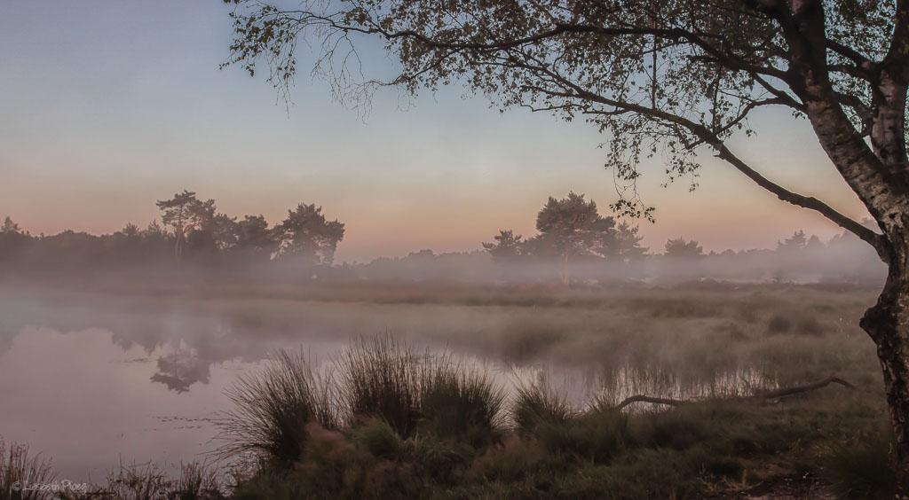Gebieden fotograferen Natuurfotografie.nl:Strabrechtse Heide