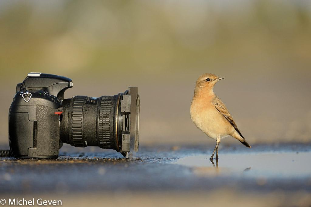 Jury NK natuurfotografie bekend
