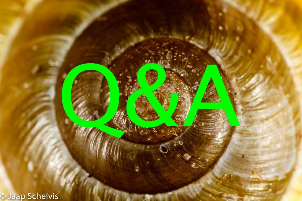 Nieuwe rubriek: Q&A