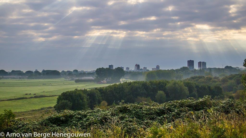 Gebieden fotograferen Natuurfotografie.nl:Buytenpark Zoetermeer