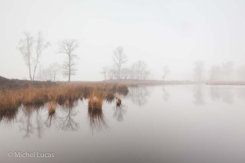 Gebieden fotograferen Natuurfotografie.nl:Overasseltse en Hatertse Vennen