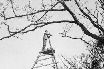 jacht-met-de-camera-pioniers-van-de-nederlandse-natuurfotografie
