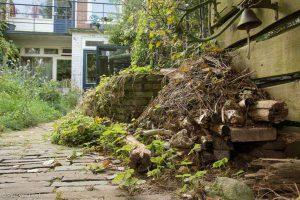 Wil je iets voor egels doen in je tuin? Maak een egelhuis.  - Fotograaf: Paul van Hoof