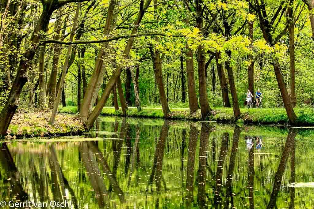 Gebieden fotograferen Natuurfotografie.nl:Mariapeel