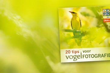 ebook vogelfotografie