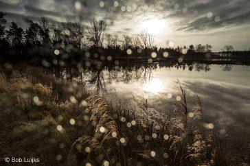 Bob_Luijks-regenfliter