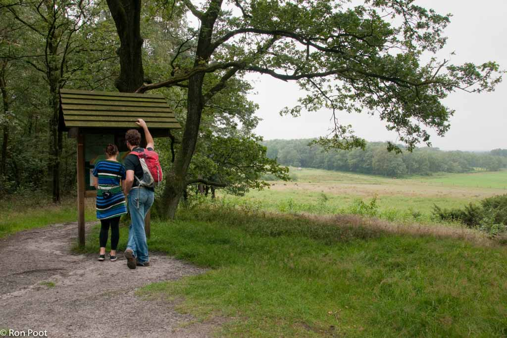 Gebieden fotograferen Natuurfotografie.nl:Dal van de Mosbeek