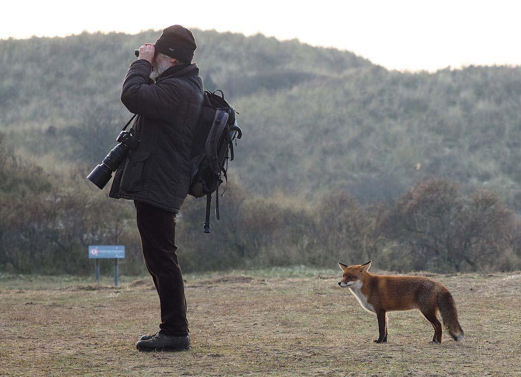 Meer humor in de natuurfotografie?