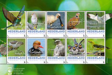 Postzegelvel zomer_800px