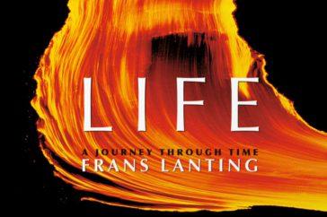 lanting_life