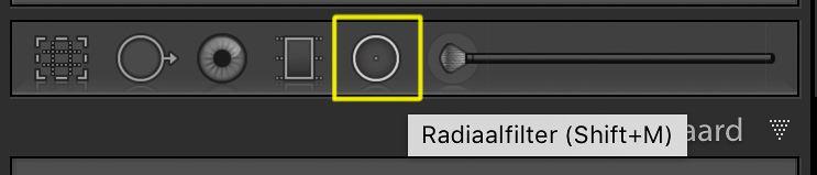 radiaalfilter