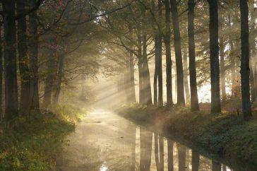 Fotowedstrijd Herfst De Groote Heide