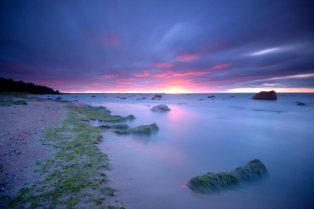Lahemaa Sunset