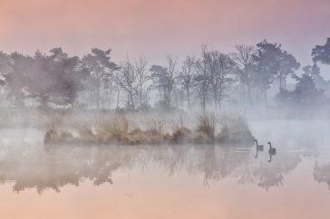 Vereniging Natuurfotografen Nijmegen