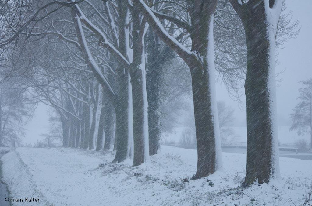 Fotobespreking thema 'sneeuw!': Frans en Anita