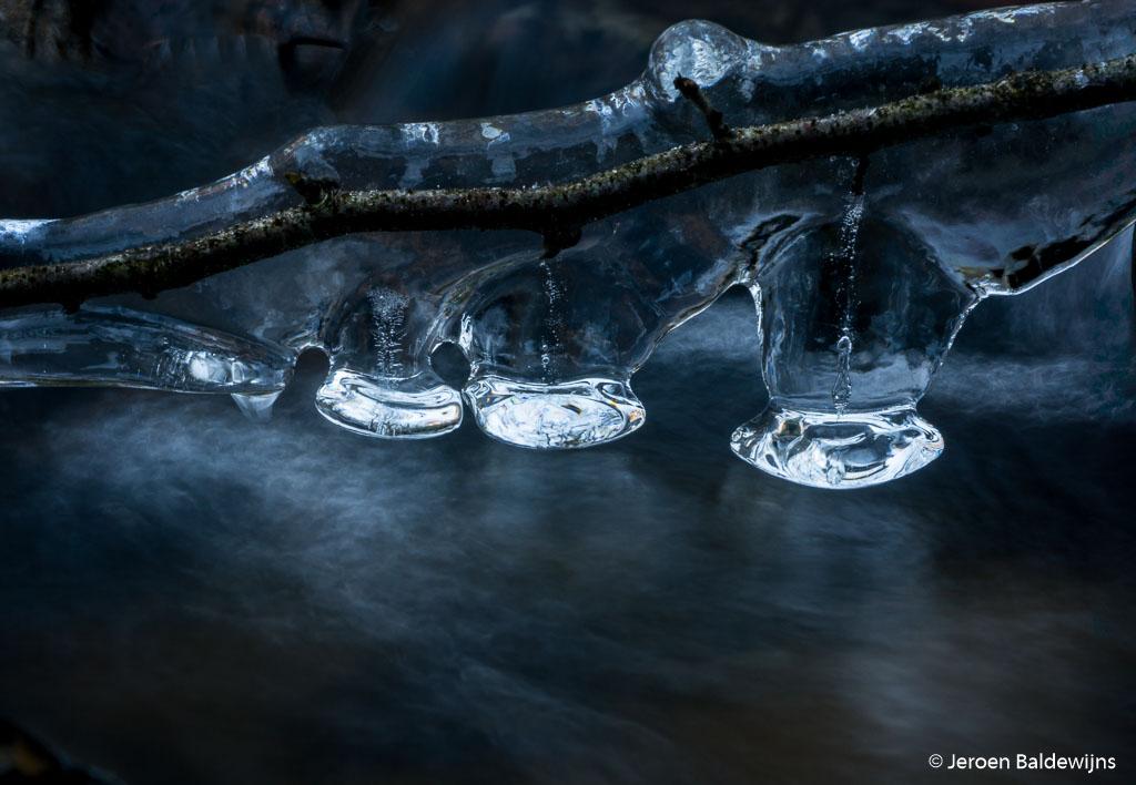 Fotobespreking thema 'natuur in de wintermaanden': Jeroen en Gonnie