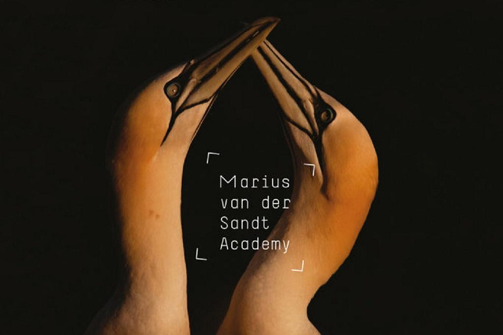Marius van der Sandt beurs