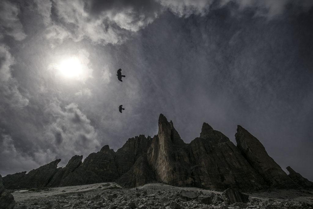 Alpenkauwen vliegen rondom de toppen van de Dolomieten