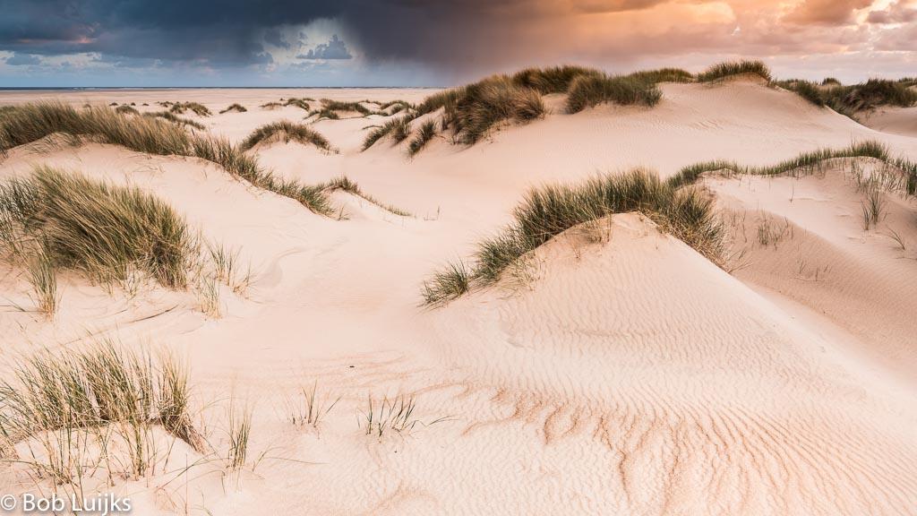 Gebieden fotograferen Natuurfotografie.nl:Tips voor natuurfotografie op Texel