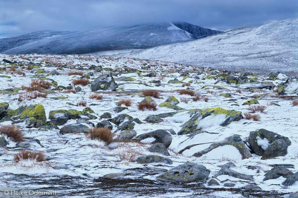 Snøhetta - Noorwegen