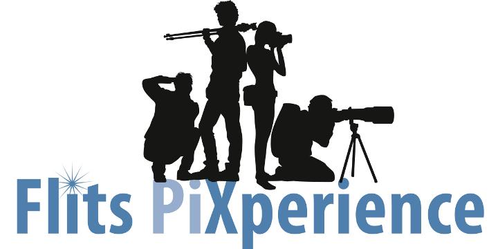 Flits PiXperience 2019
