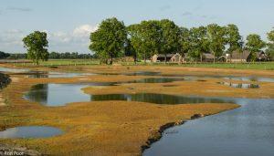 De Doorbraak bij Almelo is een voorbeeld van natuurontwikkeling die veel soorten weer een kans geeft. - Fotograaf: Ron Poot