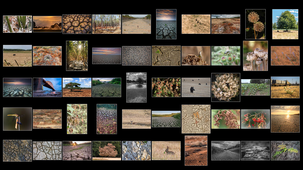 Photo Challenge Droogte