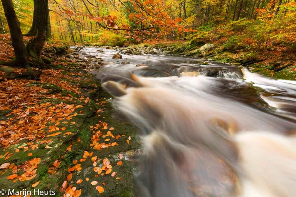 Gebieden fotograferen Natuurfotografie.nl:De mooiste beken in de Ardennen