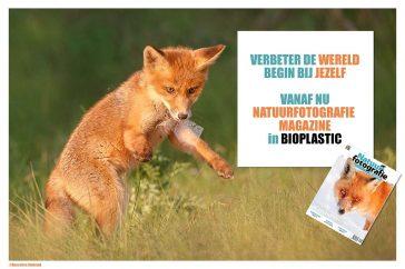 _X1B8877_fox_plastic