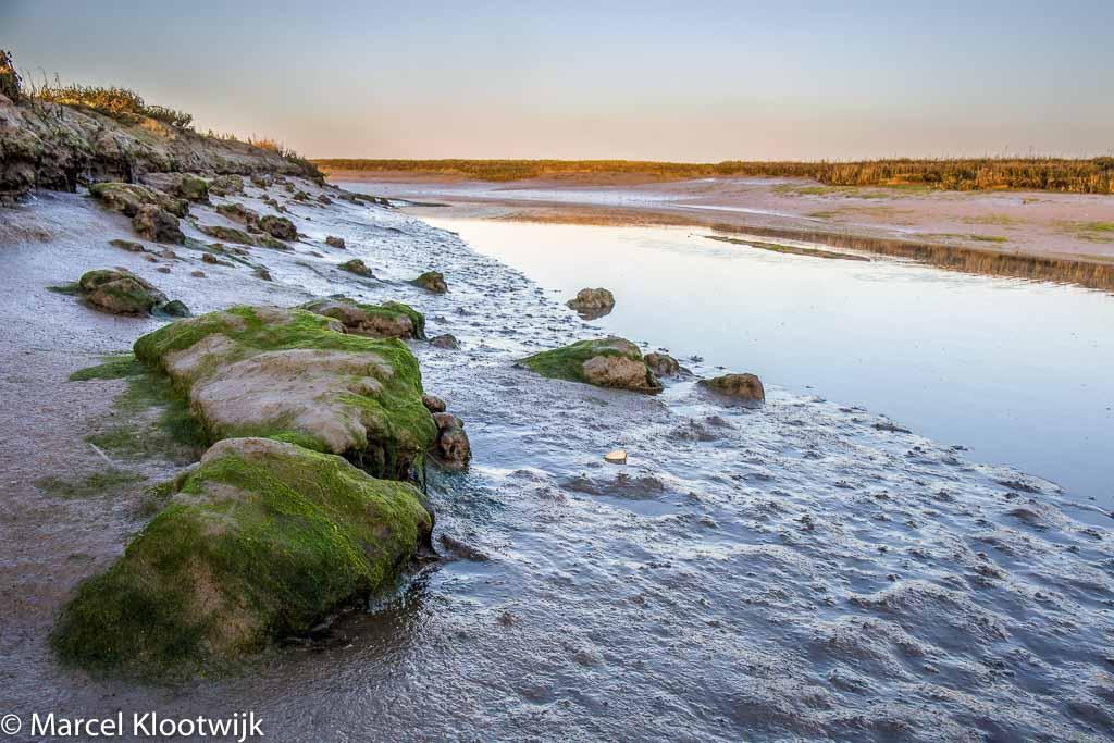 Gebieden fotograferen Natuurfotografie.nl:Stinkgat en Van Haaftenpolder