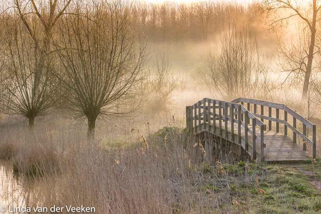Gebieden fotograferen Natuurfotografie.nl:Groot Eiland; Zeeuws-Vlaanderen