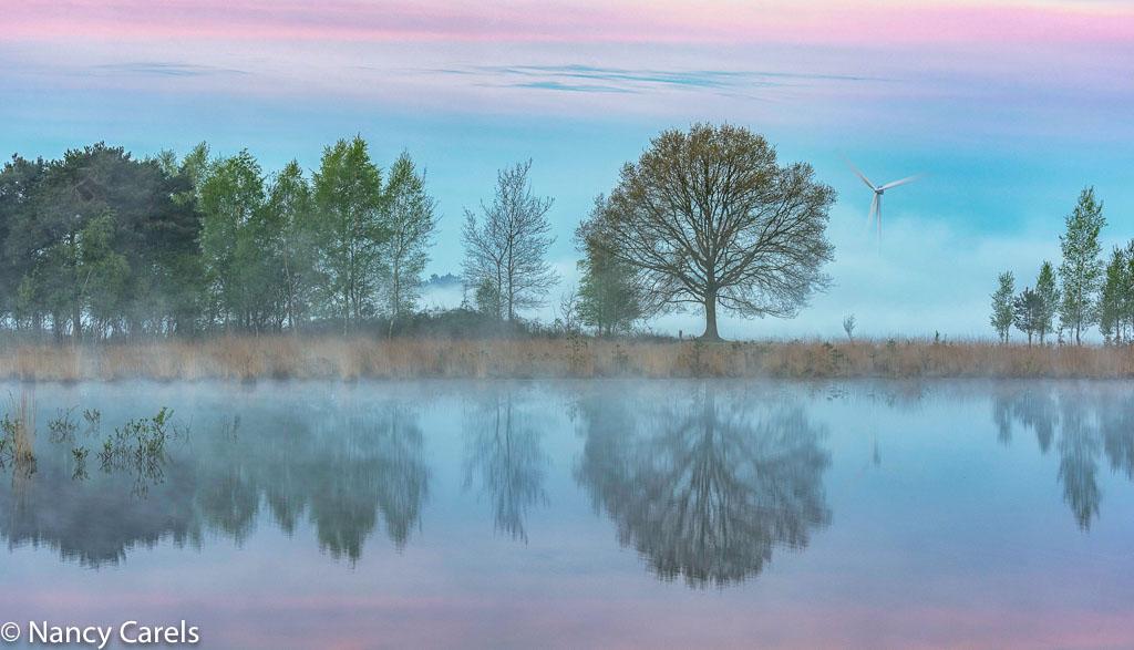 Gebieden fotograferen Natuurfotografie.nl:Huis ter Heide