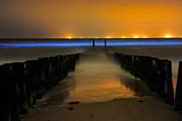 Lichtende zee – Jan Koeman